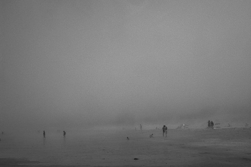 Foggy day, Montalvo. Galicia, Spain