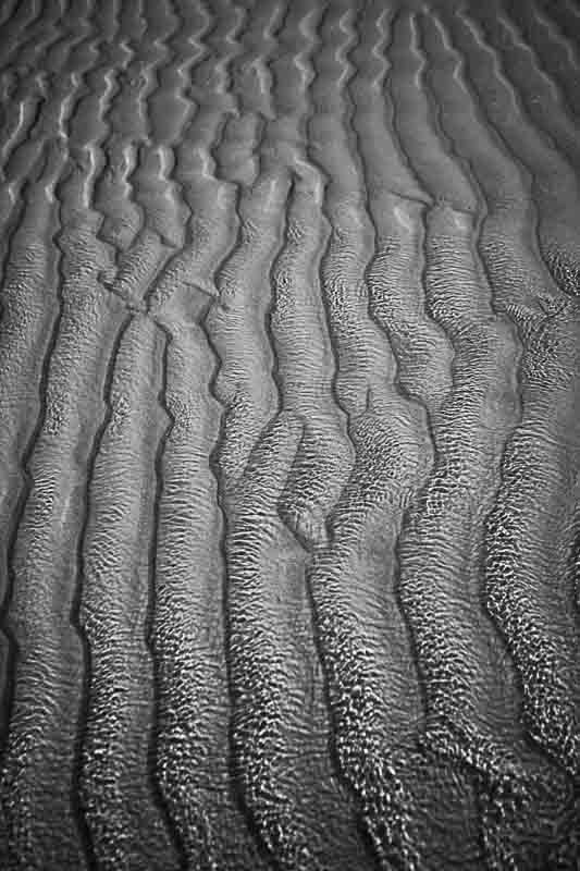 Lines (II)
